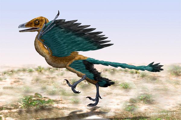 Археоптерикс (Archaeopteryx), фото вымершие животные