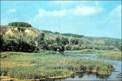Речка на равнине. Фото, фотография