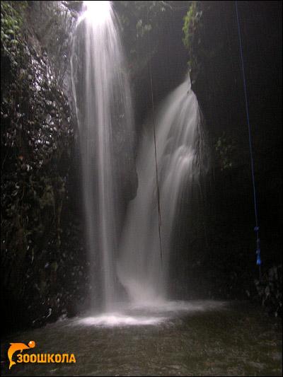о. Бали. Водопад в горах. Фото, фотография