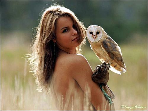 Девушка с совой сипухой, Фото фотография картинка птицы