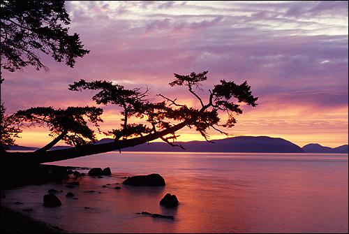 Красивый закат на берегу. Фото, фотография