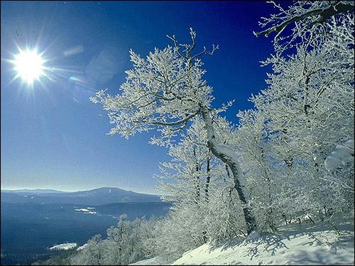 Зима в горах. Фото, фотография