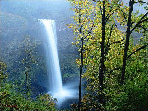 Лес. Водопад. Фото, фотография